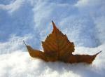 Абонаментно снегопочистване и опесъчаване